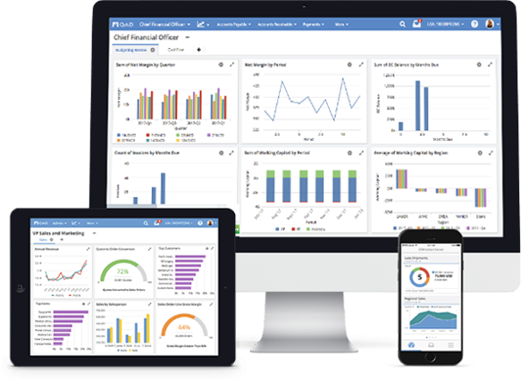 ERP Systems with advanced reporting